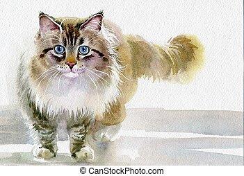 水彩, collection:, 動物, 貓