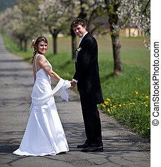 水曜日, 春, 恋人, 花婿, -, 若い, 花嫁, ポーズを取る, 新たに, 屋外で, 結婚式, 美しい, 日