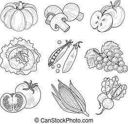水果, 以及, 蔬菜, handdrawn, 矢量, 插圖