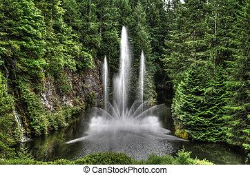 水泉源, 在公园, 在中, hdr