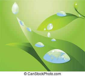 水滴, 葉
