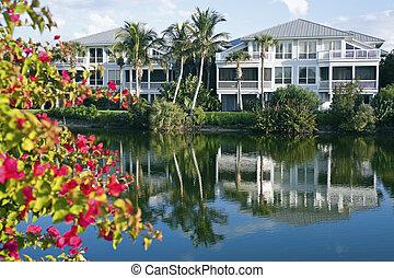 水辺地帯, フロリダ, 共同体