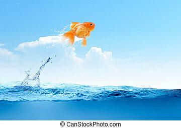 水, から, 金魚, 跳躍