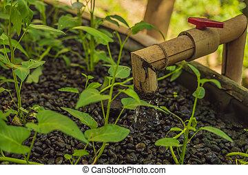 水 コック, 庭, ベッド, パイプ, 竹