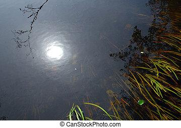 水, 太陽, 寒い, 反射