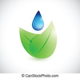 水, 葉, 概念, 自然, イラスト