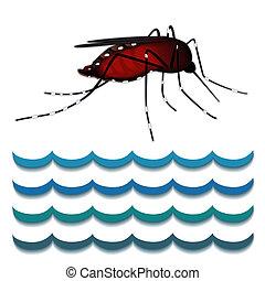 水, 蚊, 熱,  dengue