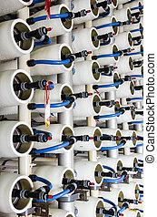 水, desalination, 植物