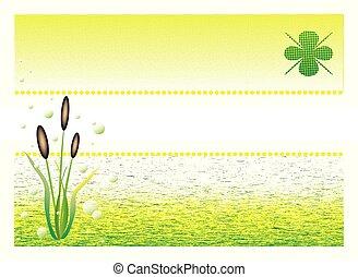 水, grass., 自然, 背景