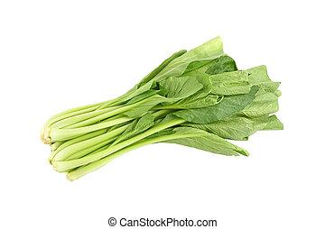 汉语, 绿色的芥子气, 蔬菜, 在怀特上, 背景。