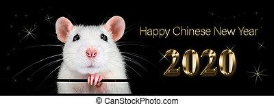 汉语, rat., 2020., fortune., 年, 新