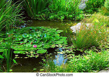 池塘, 景觀美化