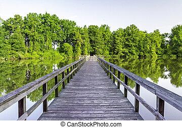 池, 中に, アラバマ, そして, 木製である, フィート橋