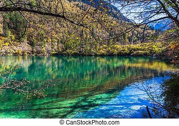 池, 公園, 美しい, 国民, jiuzhaigou