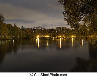 池, 公園, night.