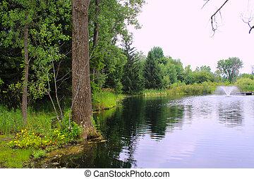 池, 噴水