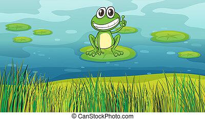 池, 微笑, カエル