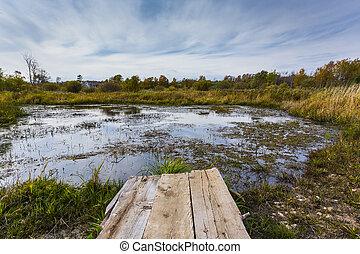 池, 景色, litty, 突堤, 写真