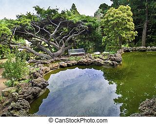 池, 装飾用, 光景