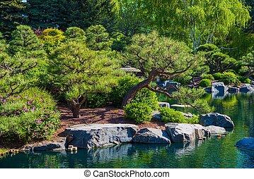 池, rockery の庭