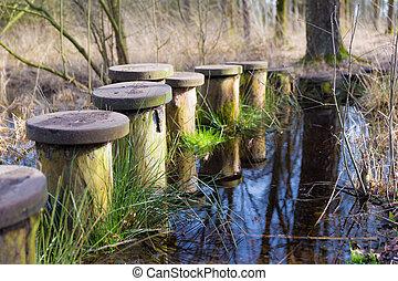 池, steppingstones, 横切って