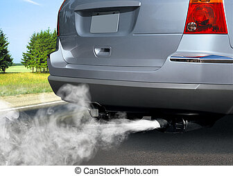 污染, 在中, 环境
