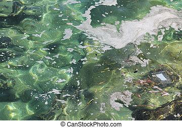 污染, 海
