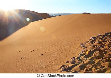 沙丘, 在, the, valle鑭luna, (moon, valley), 在, atacama 沙漠, 智利