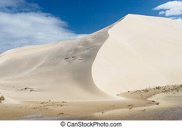 沙丘, #6