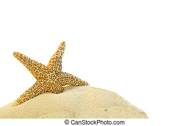 沙子, 單個, starfish, 小山