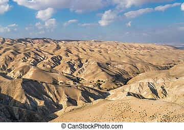 沙漠, 從, 更進一步, 權利
