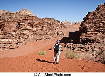 沙漠, 約旦, 遊人, 甘蔗酒, 干涸河道