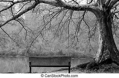 河岸, 木, ベンチ