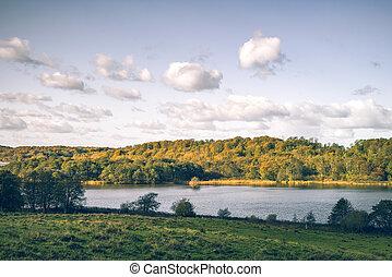 河, 在中, a, 乡村的地形, 带, 金色, 树