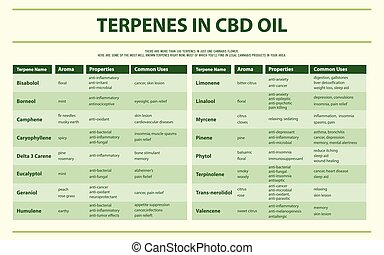 油, infographic, 水平, cbd, terpenes