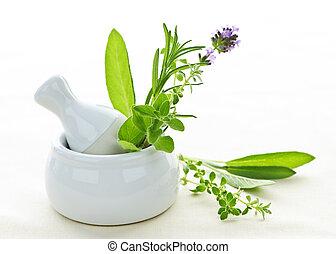 治療, 藥草, 在, 灰漿和研杵
