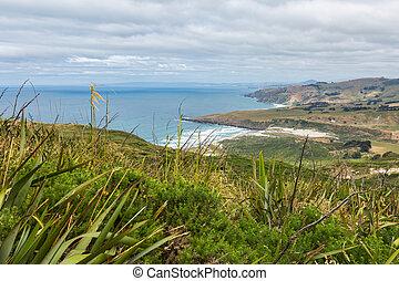 沿岸である, 光景, から, 上, の, ∥, mouintain., ニュージーランド, otago, 半島