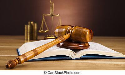 法律, そして, お金, 概念