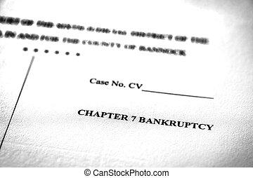 法的, 法廷, 7, ペーパー, pleadings, 章, 法律, 破産