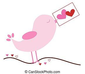 注意到, 爱鸟