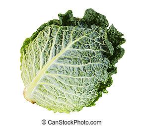 洋白菜, 背景, 白色, 新鲜, 绿色, 隔离