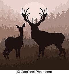 活気づけられた, 雨, 鹿, 中に, 野生, 性質の景色, イラスト