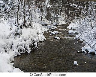 流れ, ブランチ, 風景, 太陽, 時間, 石, 木, のどかな, 金, 入り江, 水, 冬, 森林, カバーされた, 雪, ライト