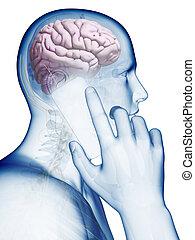 流動, 腦子, 影響, 電話