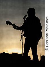 流行的音樂音樂會, 階段, 以及, 音樂家, 黑色半面畫像