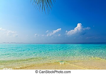 浜, すてきである