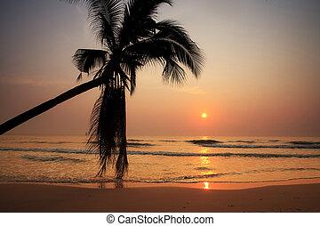浜, ∥において∥, 日没
