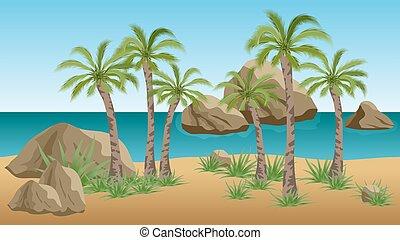 浜, やし, やし, トロピカル, 背景, 海, 風景, 現場, 岩