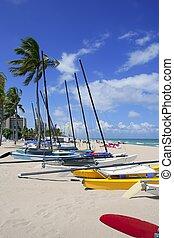 浜, カタマラン, フロリダ, lauderdale, 城砦