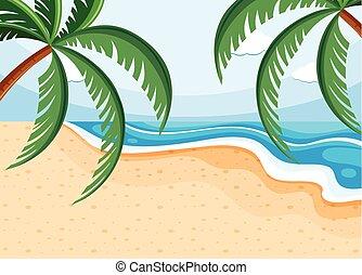 浜, ココナッツ, 現場, 背景